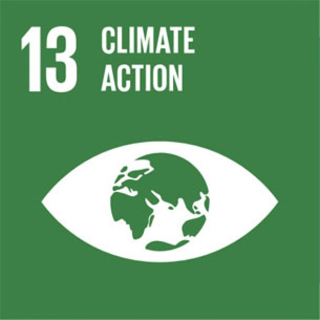 Sustainable Development Goal 13 – Climate action