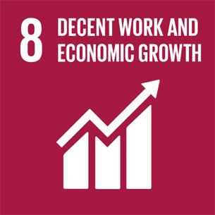 Sustainable Development Goal 8 – Decent work and economic growth